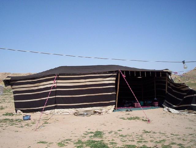 بيوت الشعر او الخيم عند bedu03.jpg