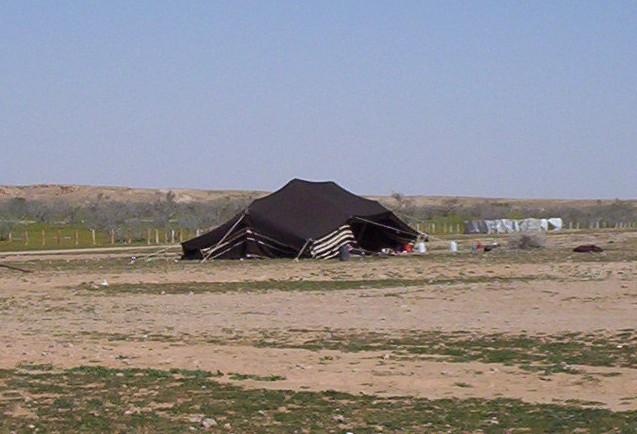بيوت الشعر او الخيم عند bedu05.jpg